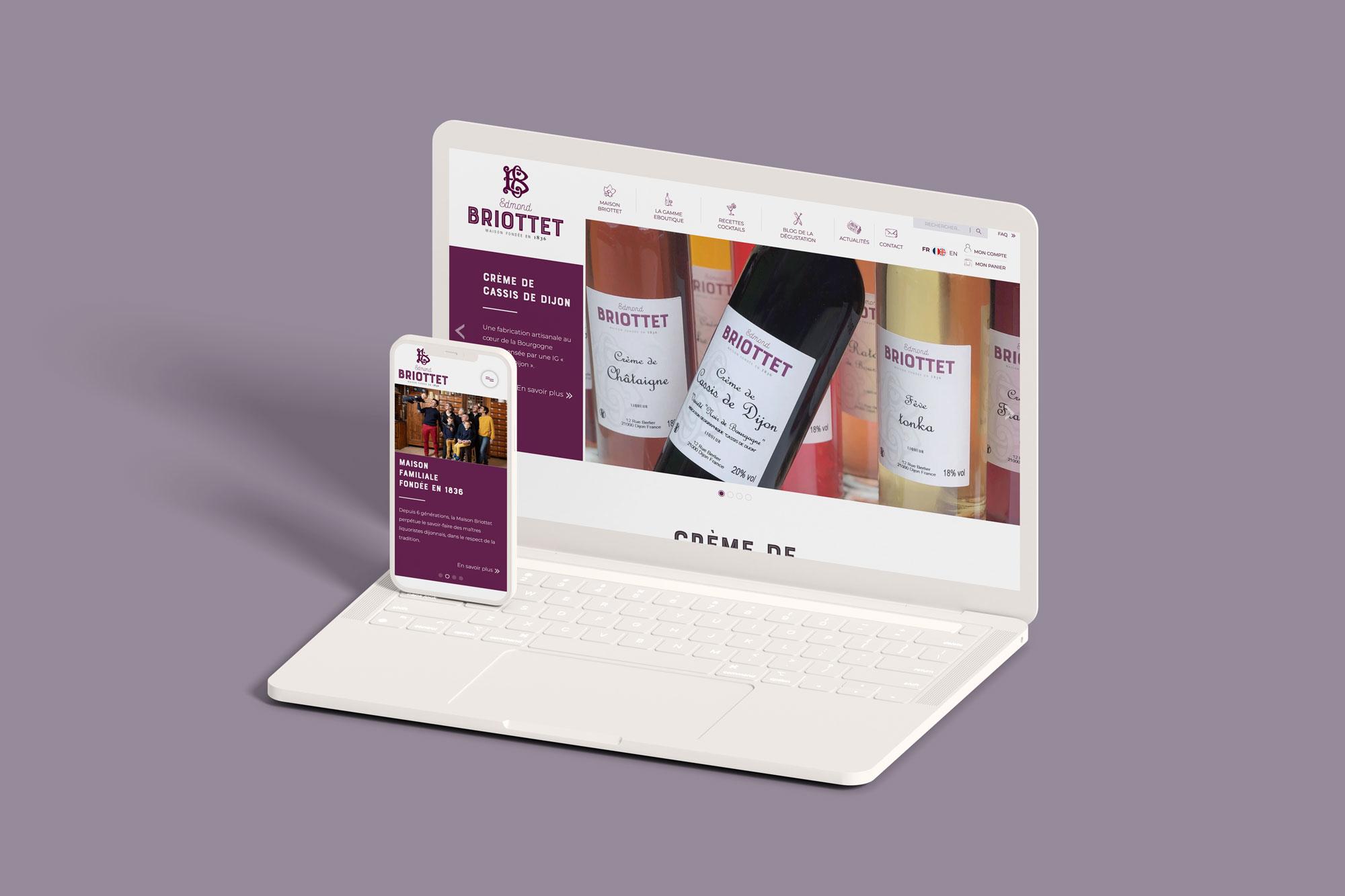 eclolink-agence-web-marketing-dijon-reference-client-briottet-mockup-responsive-web