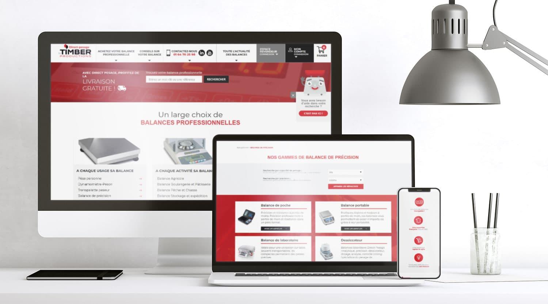 eclolink_agence_webmarketing_client_dijon_mockup_web_timber1